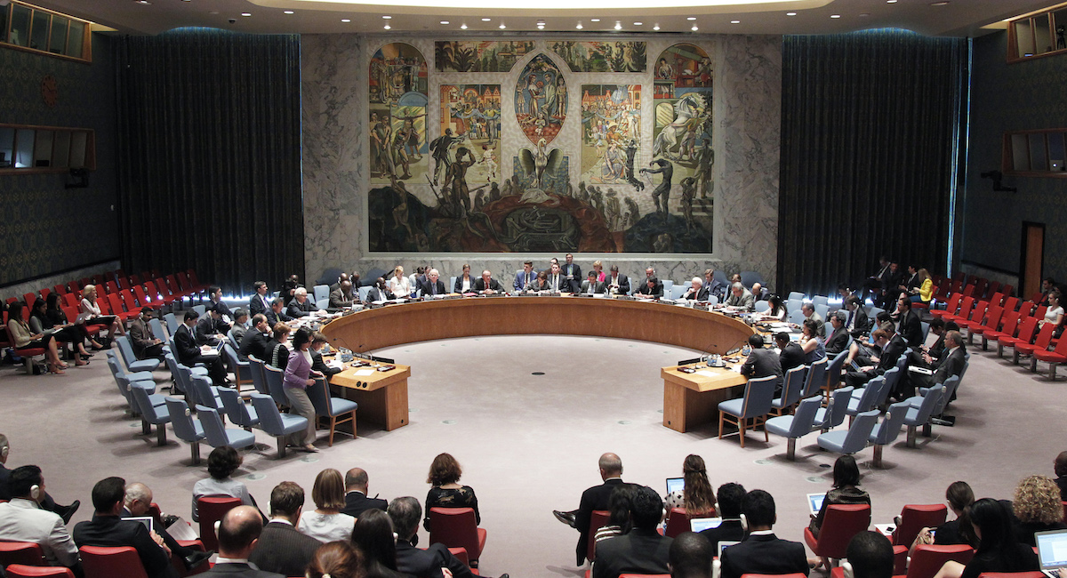 Civil society to tackle UN Security Council reform